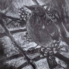 Shady Mockingbird