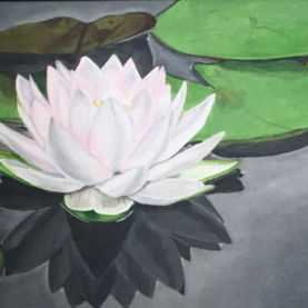First Place- Water Lily